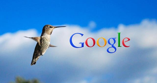 google hummingbird colibrì