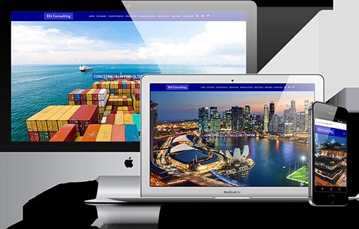 Portfolio Elit Consulting Singapore
